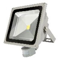 Picture of Led 20w Sensor Floodlight Redisson
