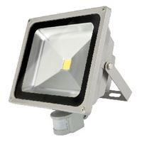 Picture of Led 20w Sensor Floodlight Redisson